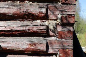 Dangers Of Creosote-Treated Wood | EnviroShield