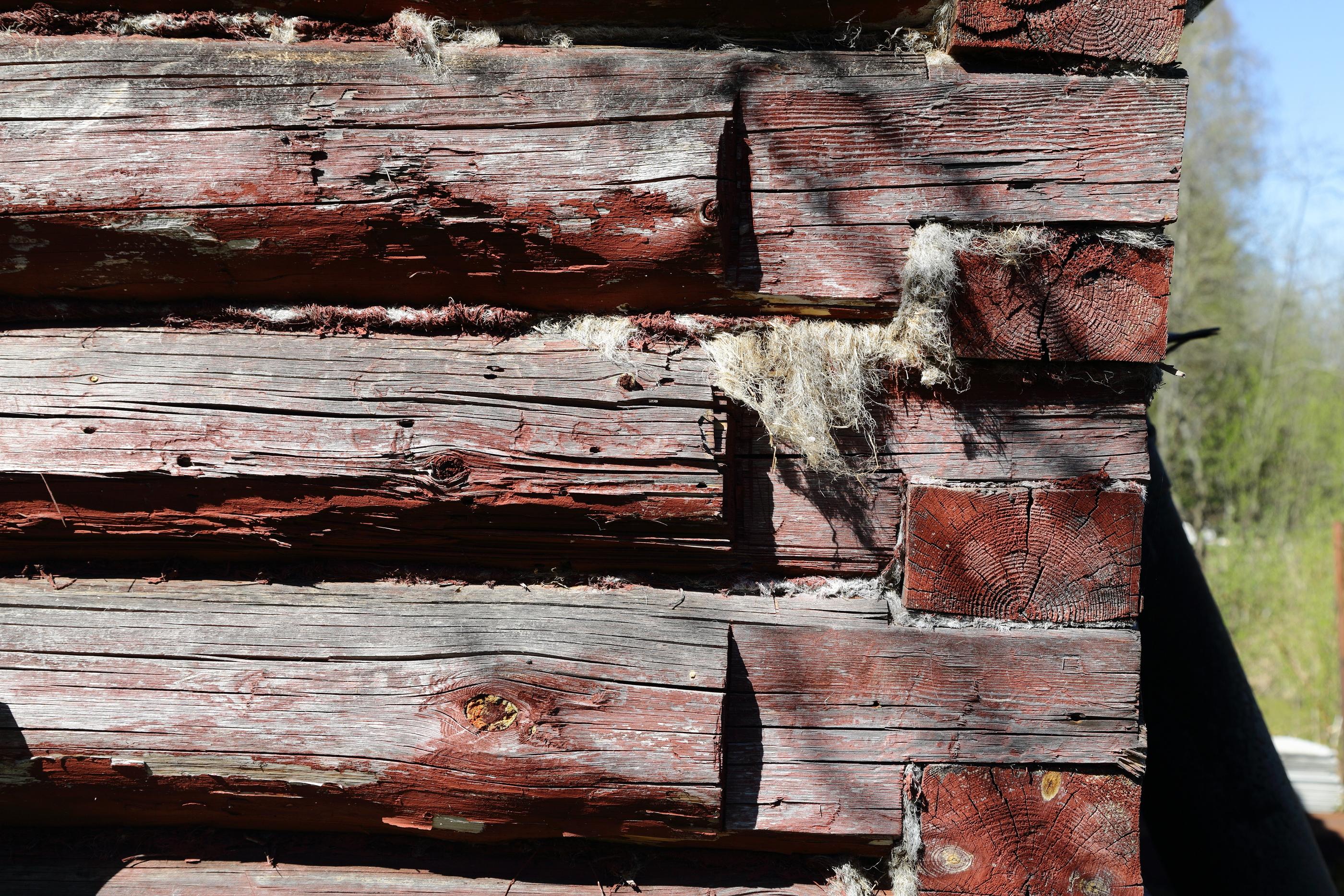 Dangers Of Creosote-Treated Wood   EnviroShield